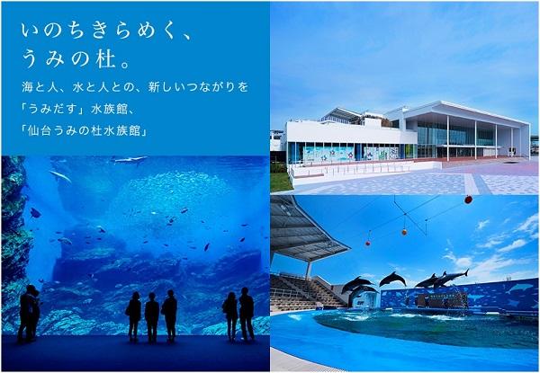 ヨシキリザメを鑑賞しつつ、おいしく食べる! 水族館を異色のアイデアで盛り上げる商社マン