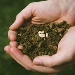 農業体験で何が変わる?