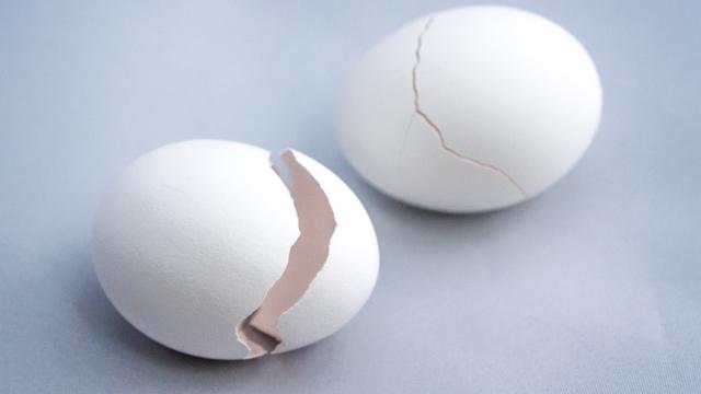 「就活に失敗しストレス」 慶大生がタワーマンションから生卵数十個投げる