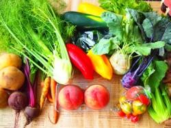 低所得者には栄養バランスを考える余裕もない