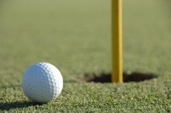 ゴルフの無理強いをしないでください