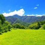 田舎と東京だと色んな面で違いがあります