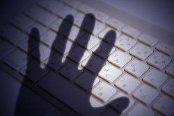 最も不安視されているのはサイバー犯罪です