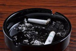 産後、喫煙を再開した母親は15%