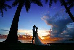 今年の結婚報道で最も結婚ロスが多かったのは二宮和也だった。