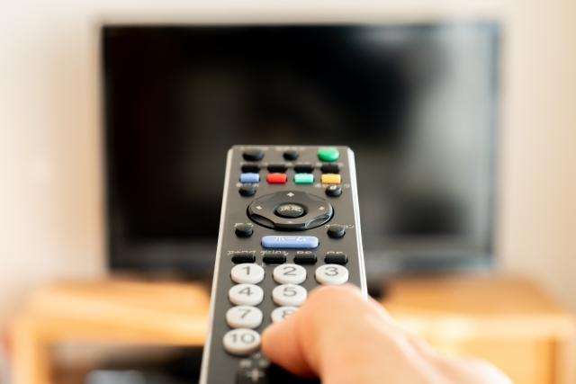 「定額制動画配信タイトルの視聴者数ランキング」