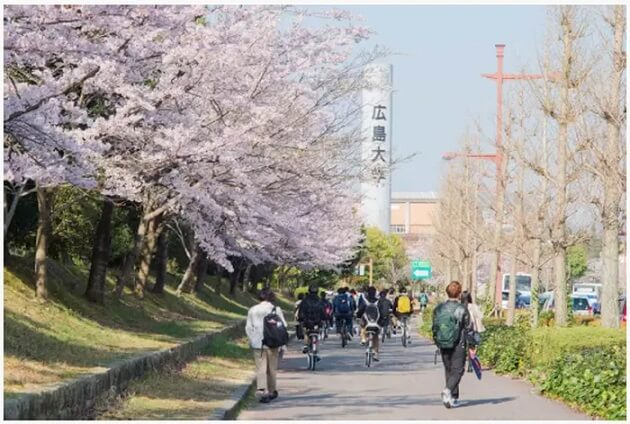 広島大学 広報グループ 提供