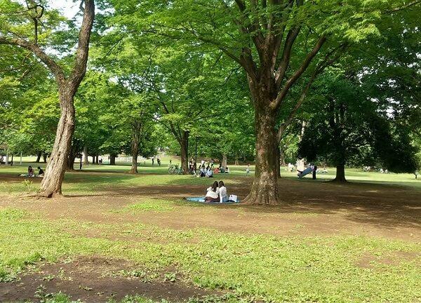 当日の砧公園の様子